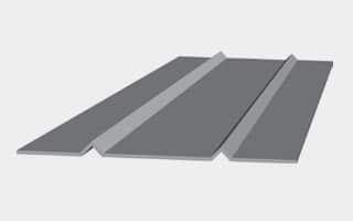 V-Ribs (Small or Large)